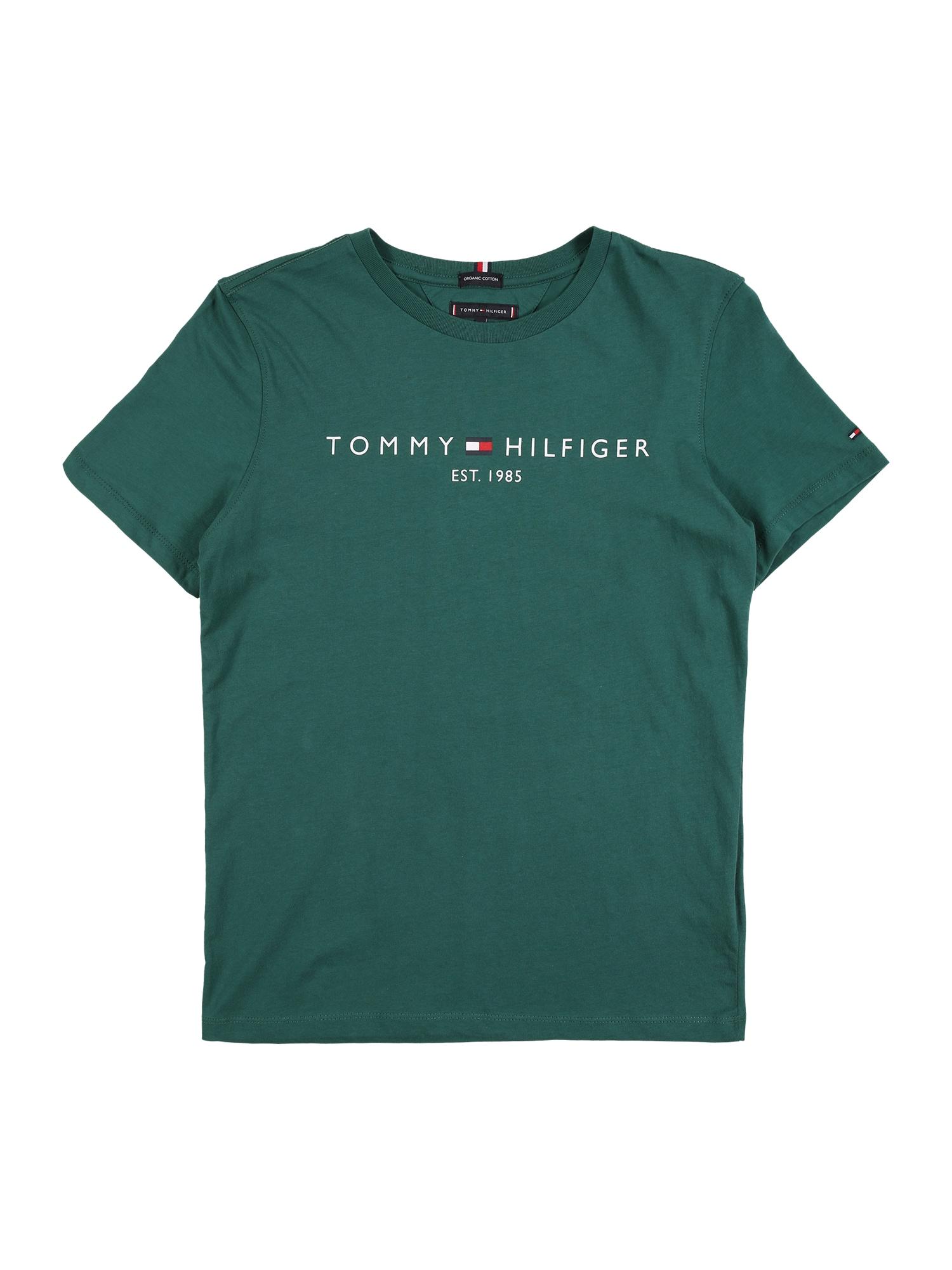TOMMY HILFIGER Tričko 'ESSENTIAL'  zelená