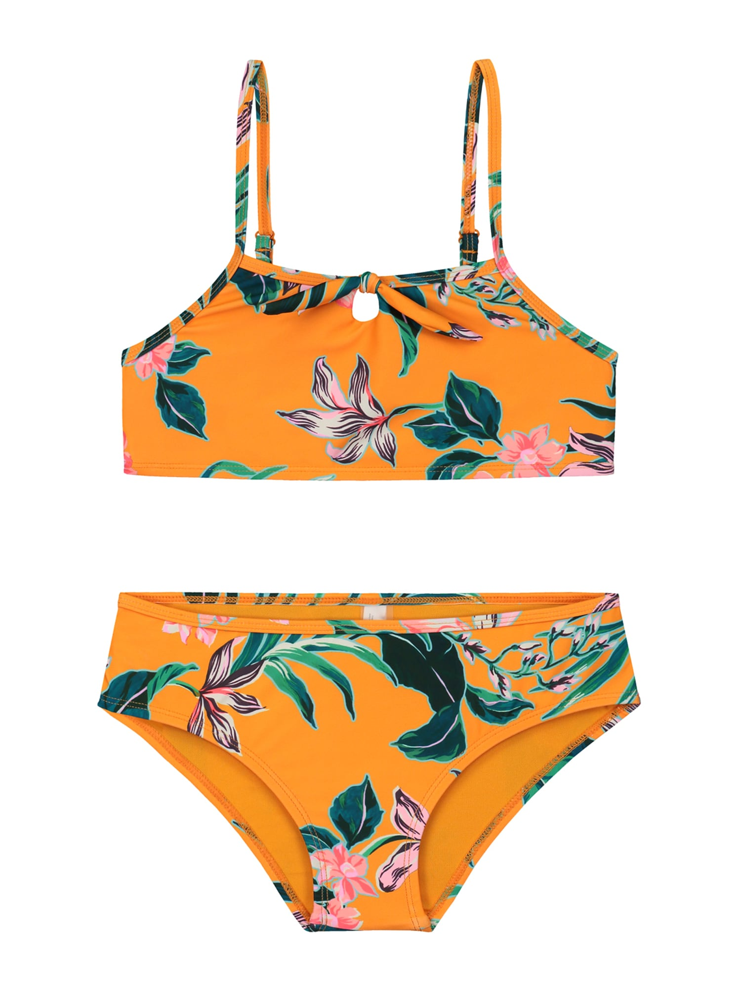 Shiwi Bikinis