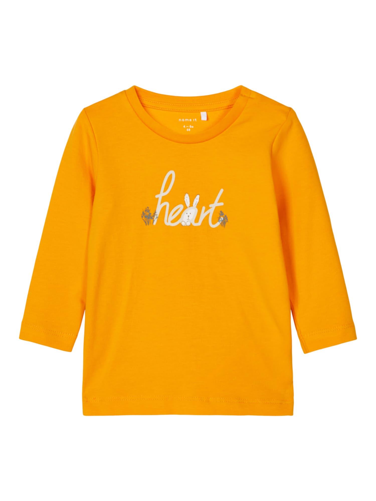 NAME IT Marškinėliai 'TIKA' oranžinė / šviesiai pilka / tamsiai pilka
