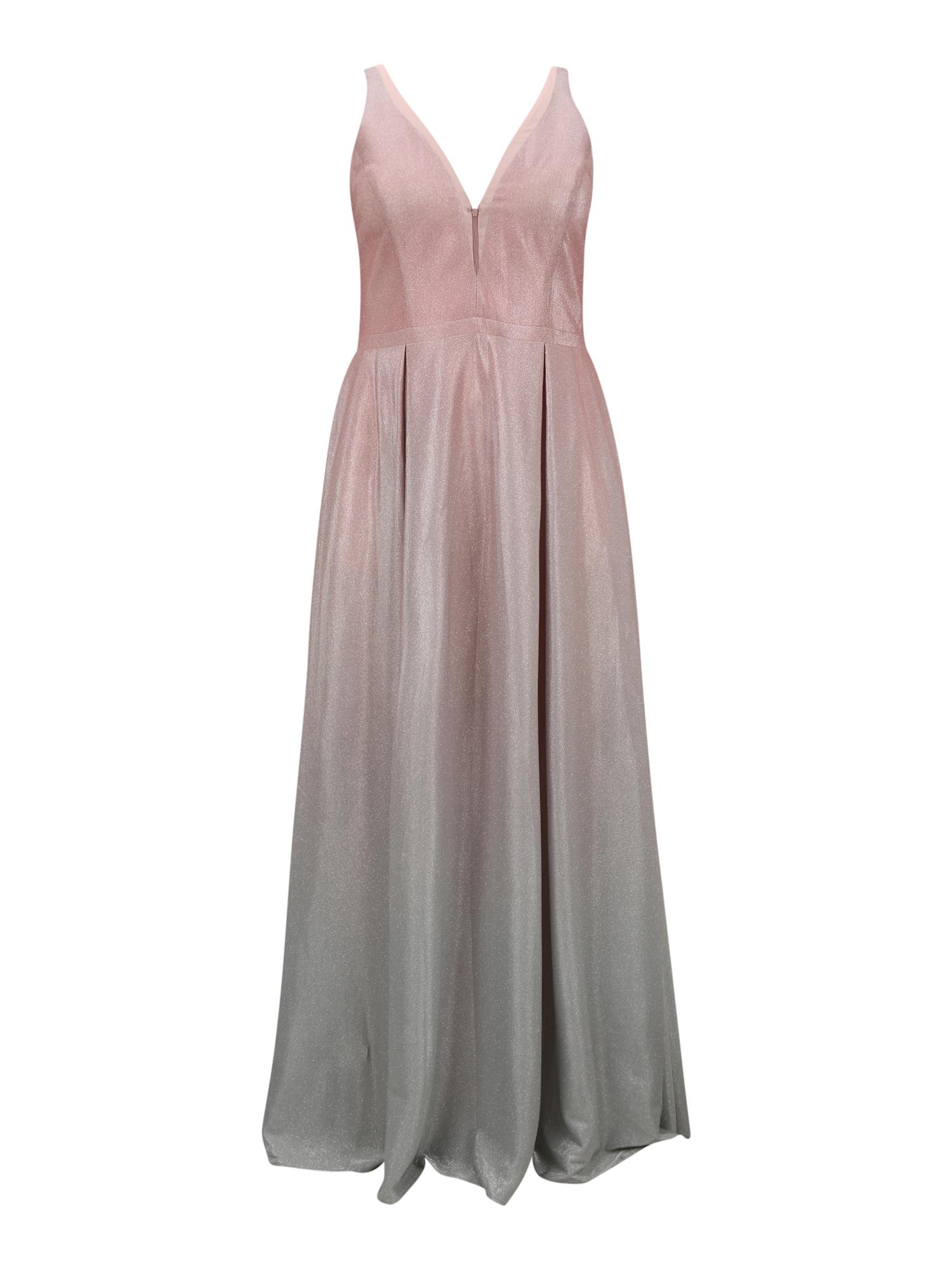 My Mascara Curves Vakarinė suknelė pilka / sidabrinė / rožių spalva