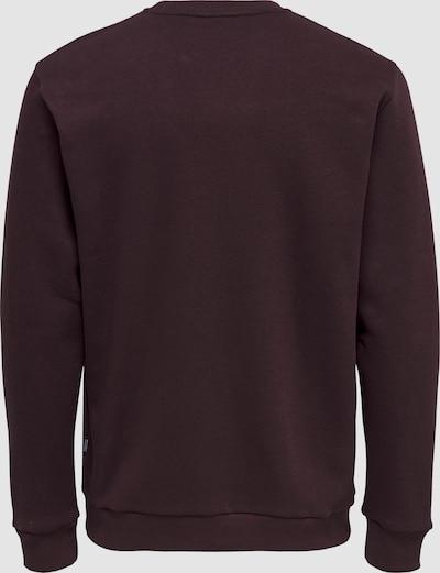 Sweater majica 'Ceres'