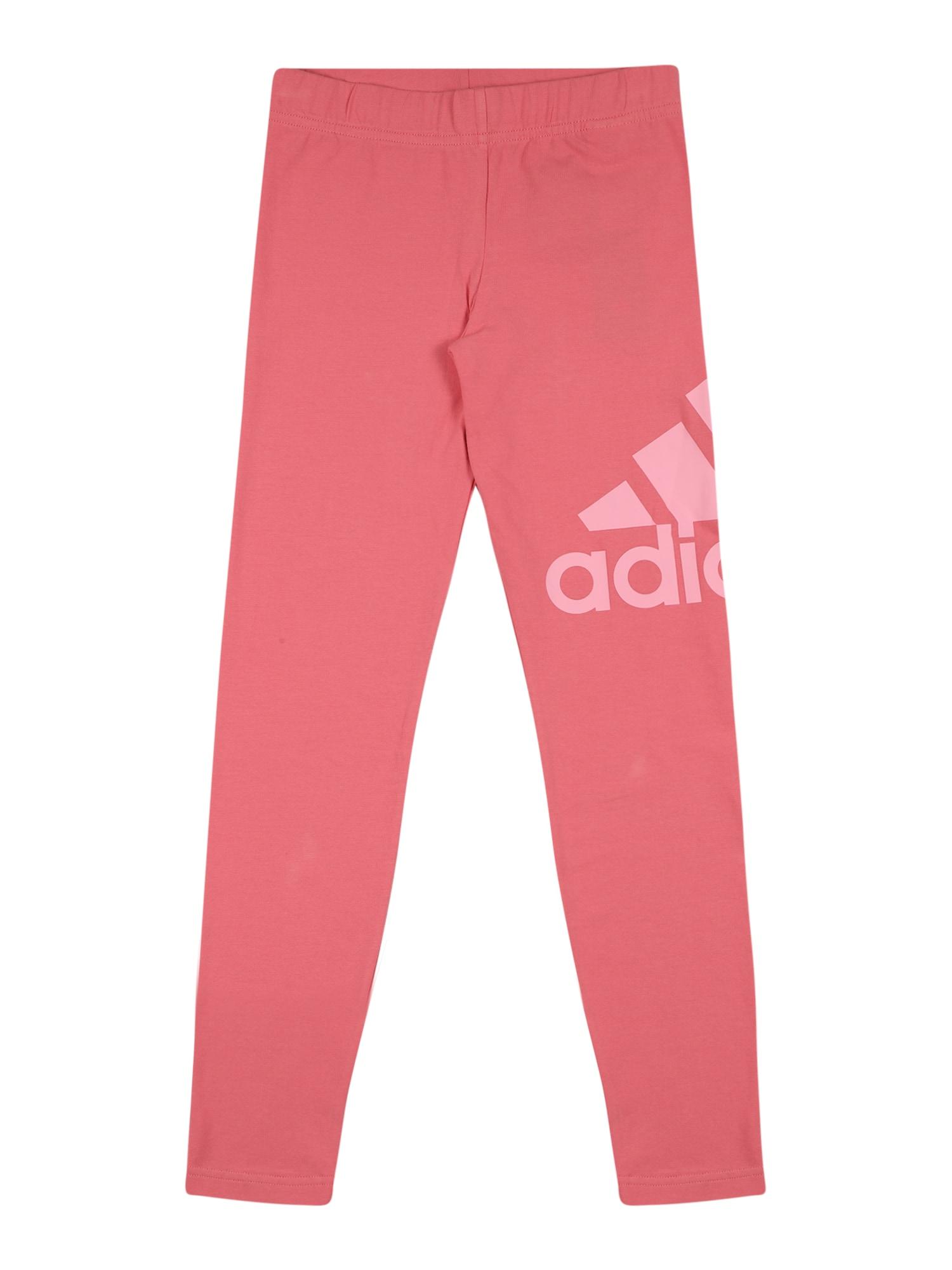 ADIDAS PERFORMANCE Sportinės kelnės rožių spalva / rožinė