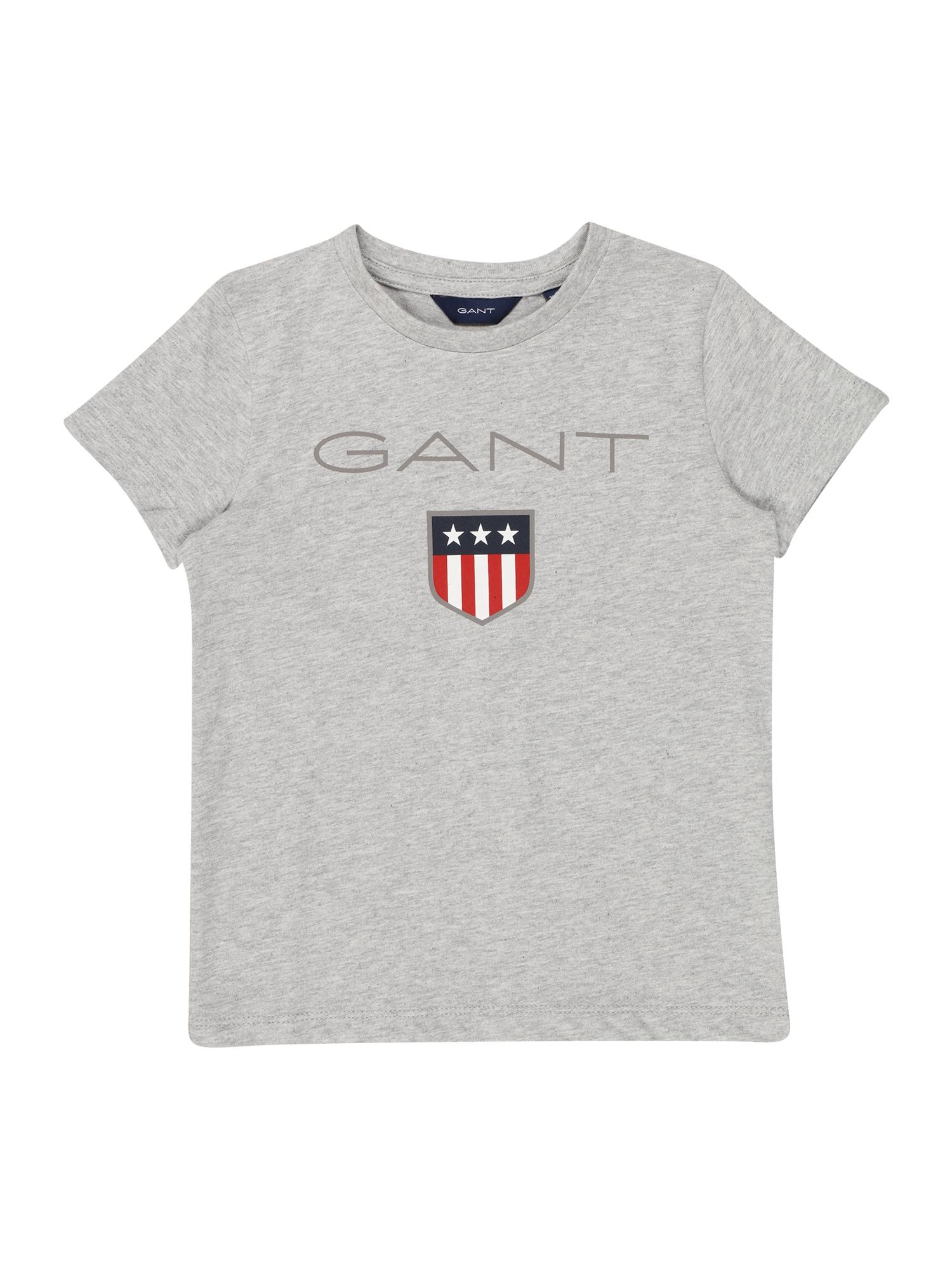 GANT Marškinėliai margai pilka / mėlyna / raudona