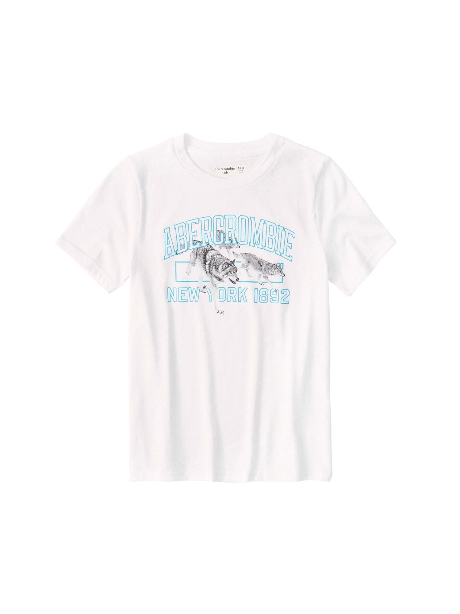 Abercrombie & Fitch Marškinėliai balta / šviesiai mėlyna / tamsiai pilka