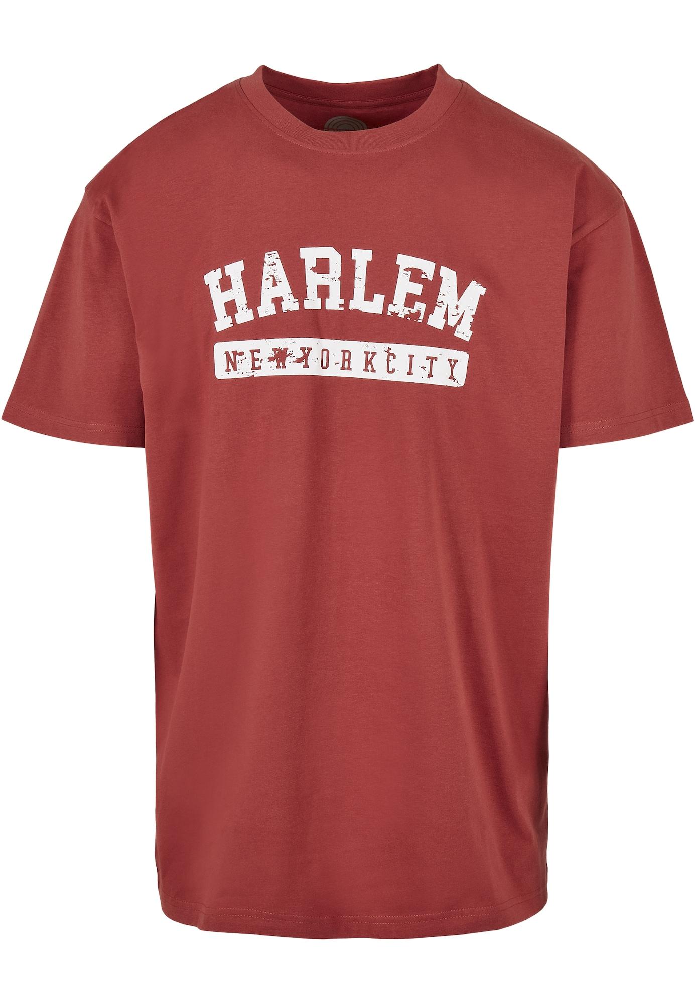 SOUTHPOLE Marškinėliai balta / pastelinė raudona