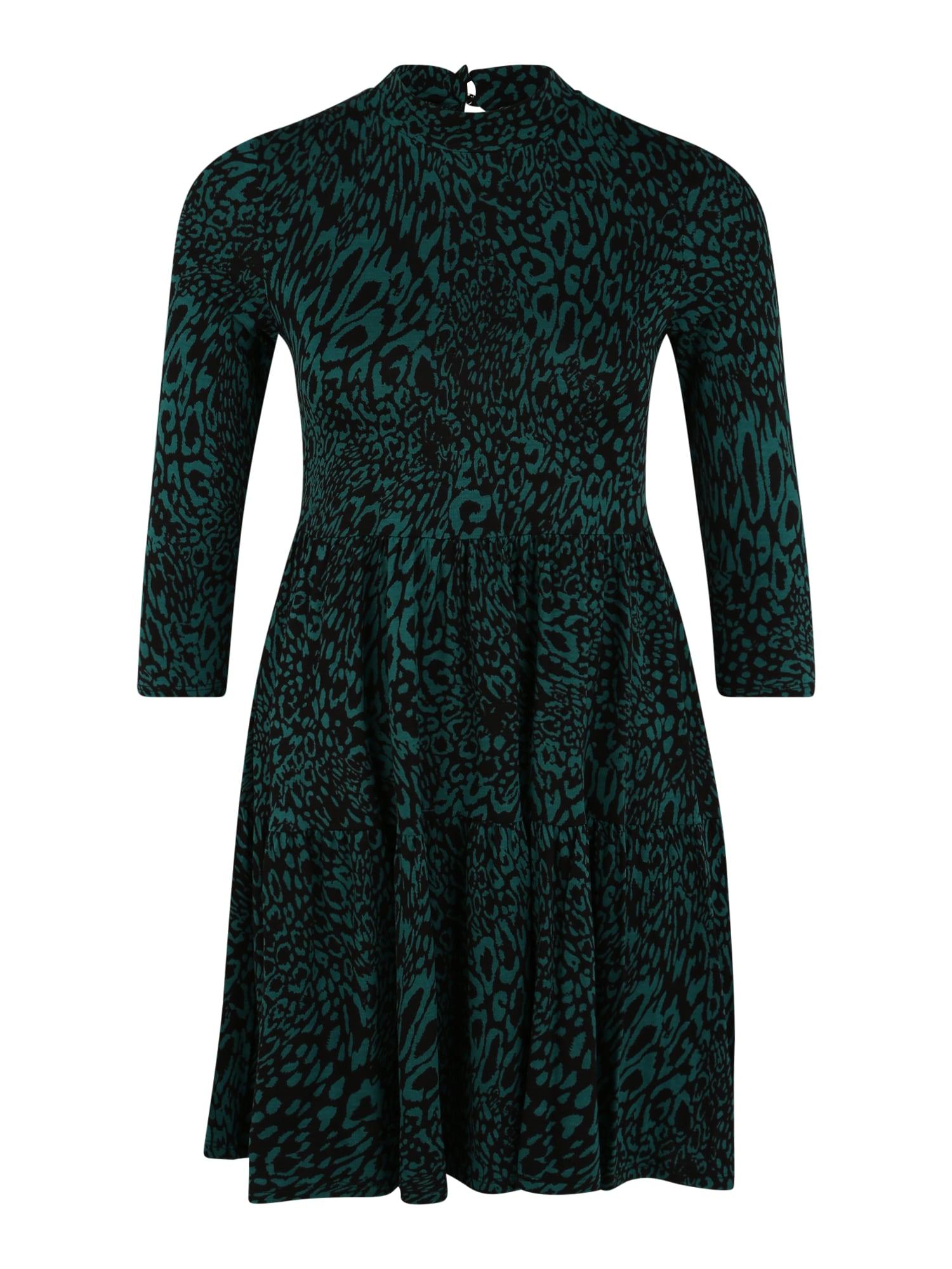 Dorothy Perkins (Petite) Suknelė žalia / juoda