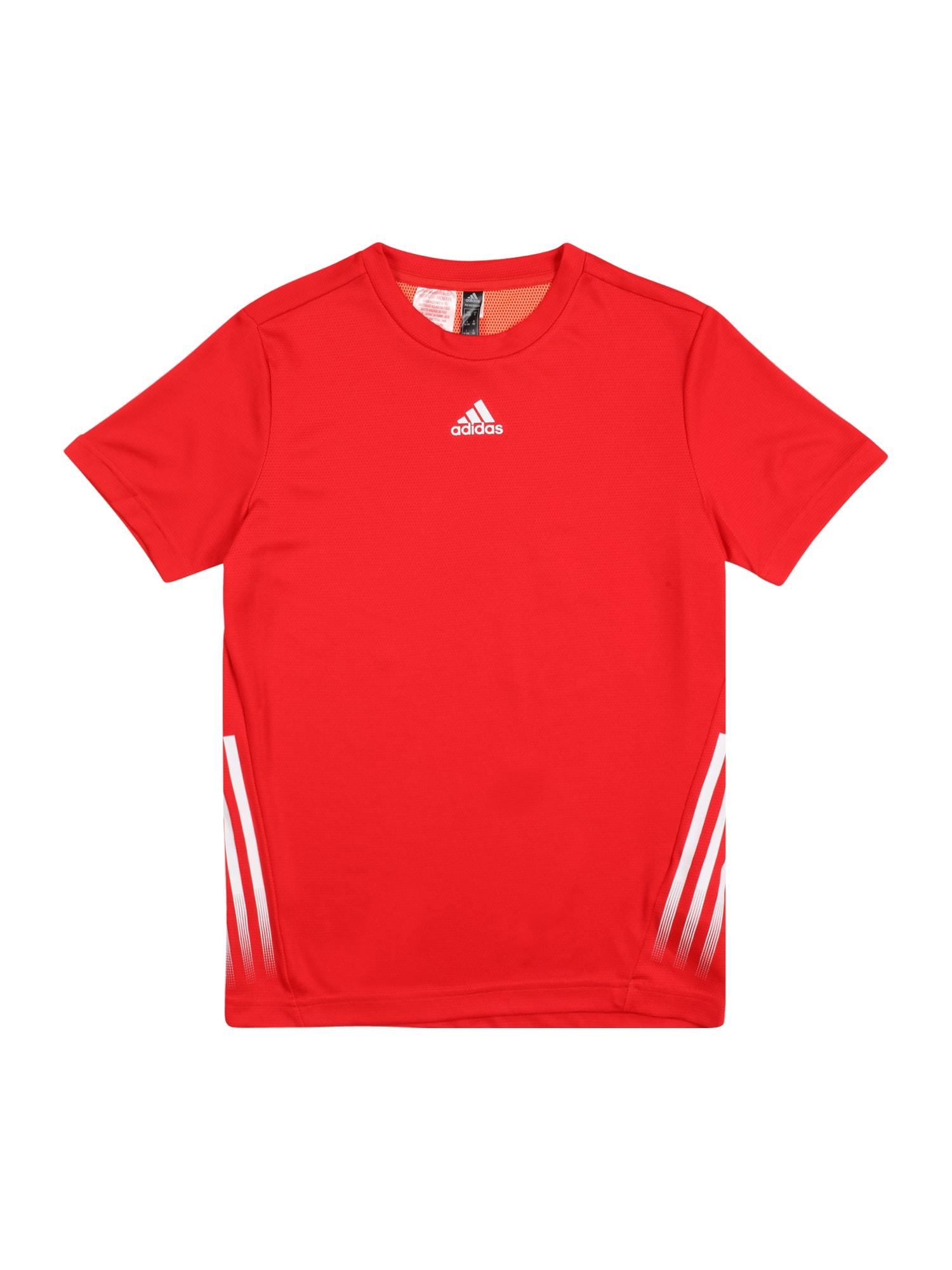 ADIDAS PERFORMANCE Sportiniai marškinėliai balta / oranžinė-raudona