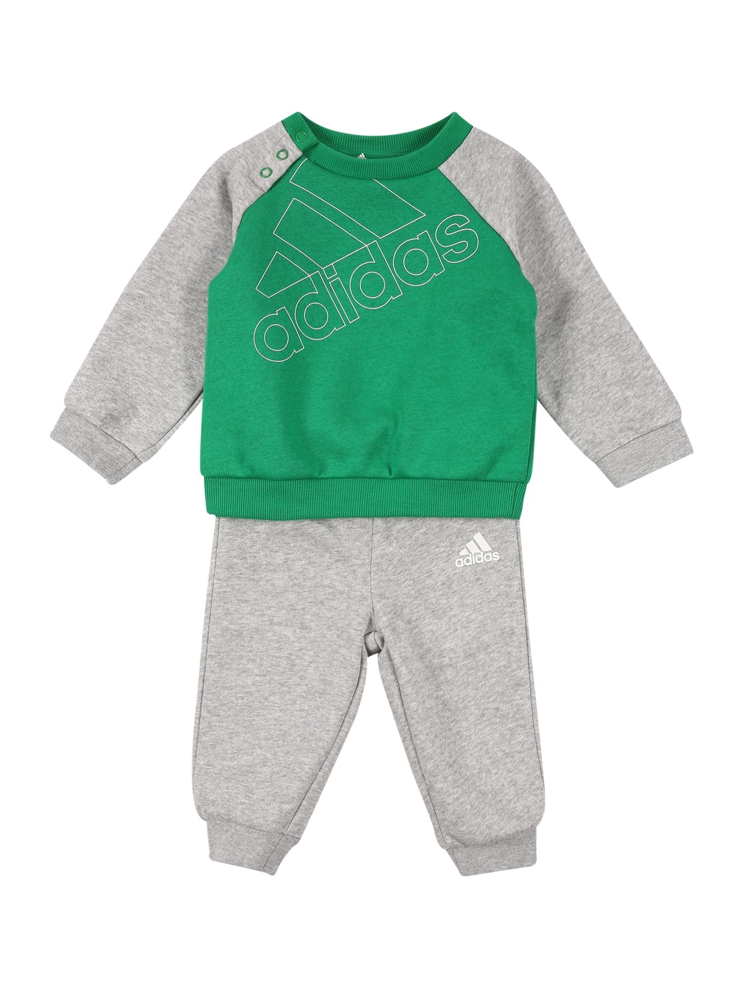 ADIDAS PERFORMANCE Treniruočių kostiumas pilka / žolės žalia