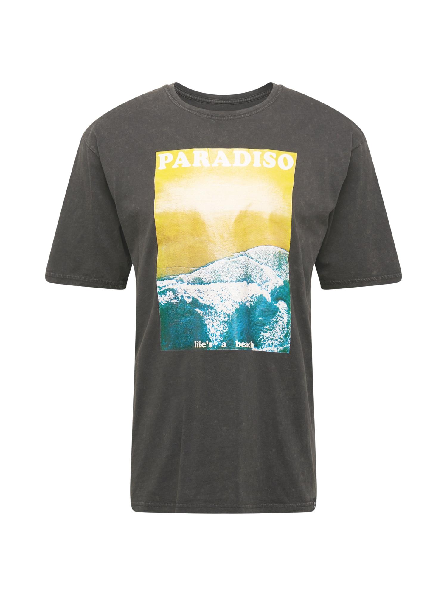 SHINE ORIGINAL Marškinėliai mišrios spalvos / antracito