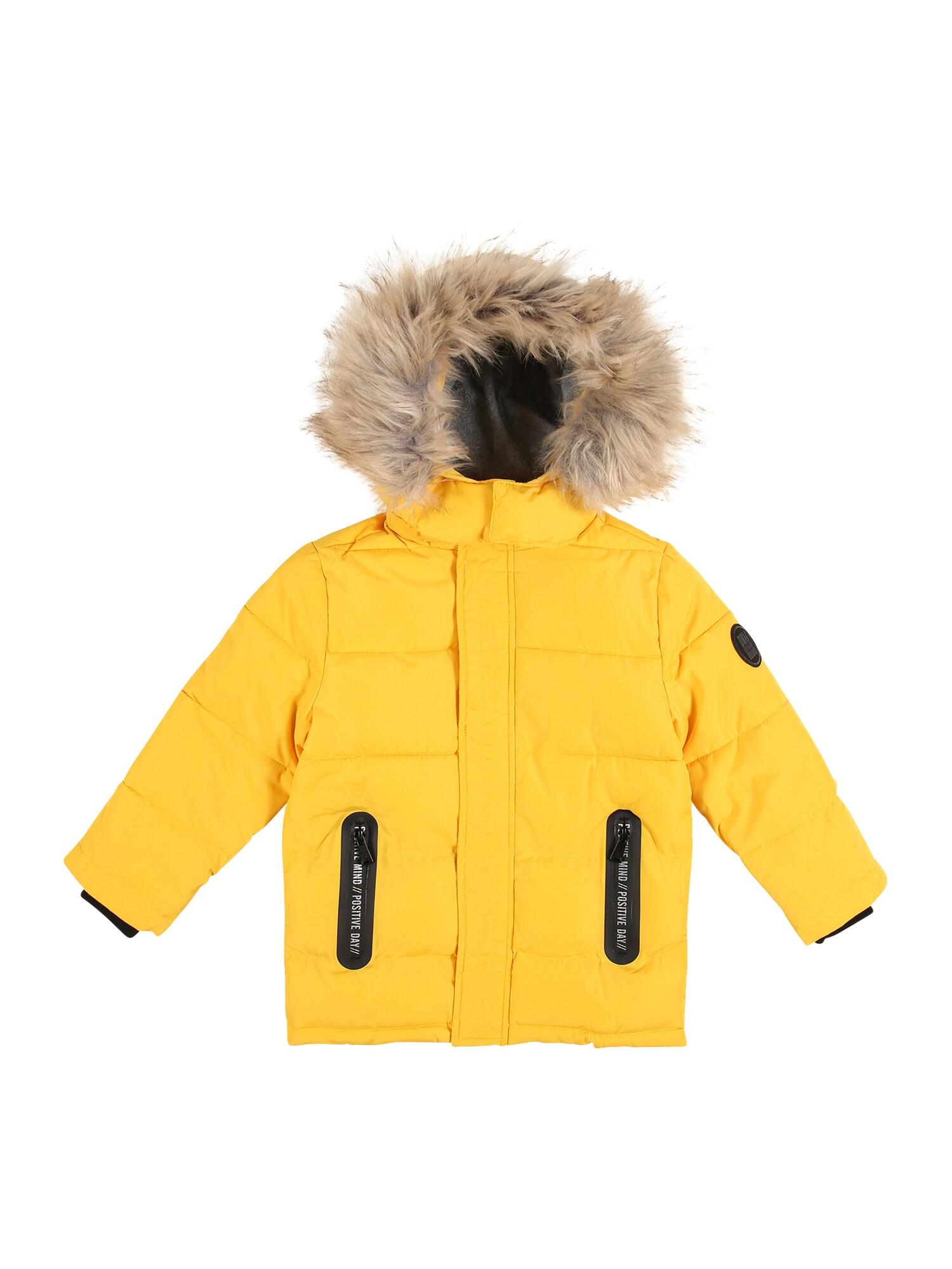 STACCATO Žieminė striukė geltona / juoda