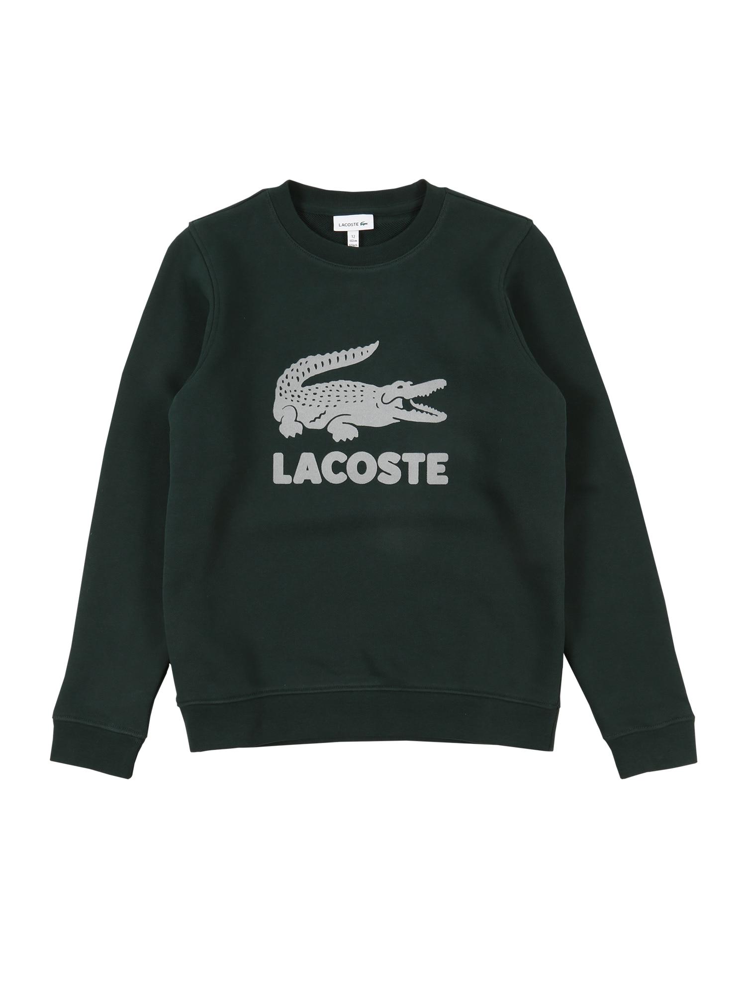 LACOSTE Megztinis be užsegimo tamsiai žalia / pilka