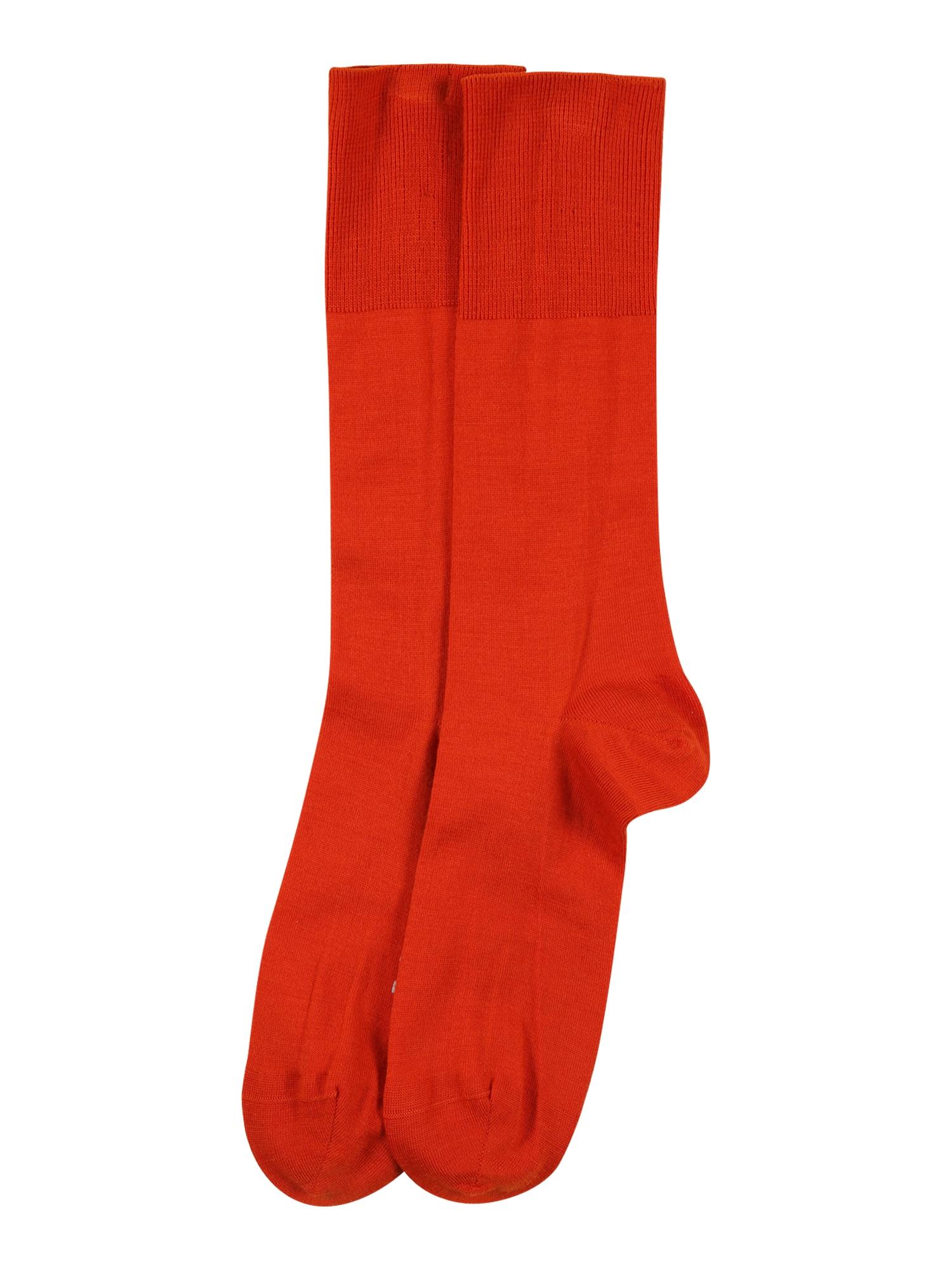 FALKE Kojinės tamsiai oranžinė