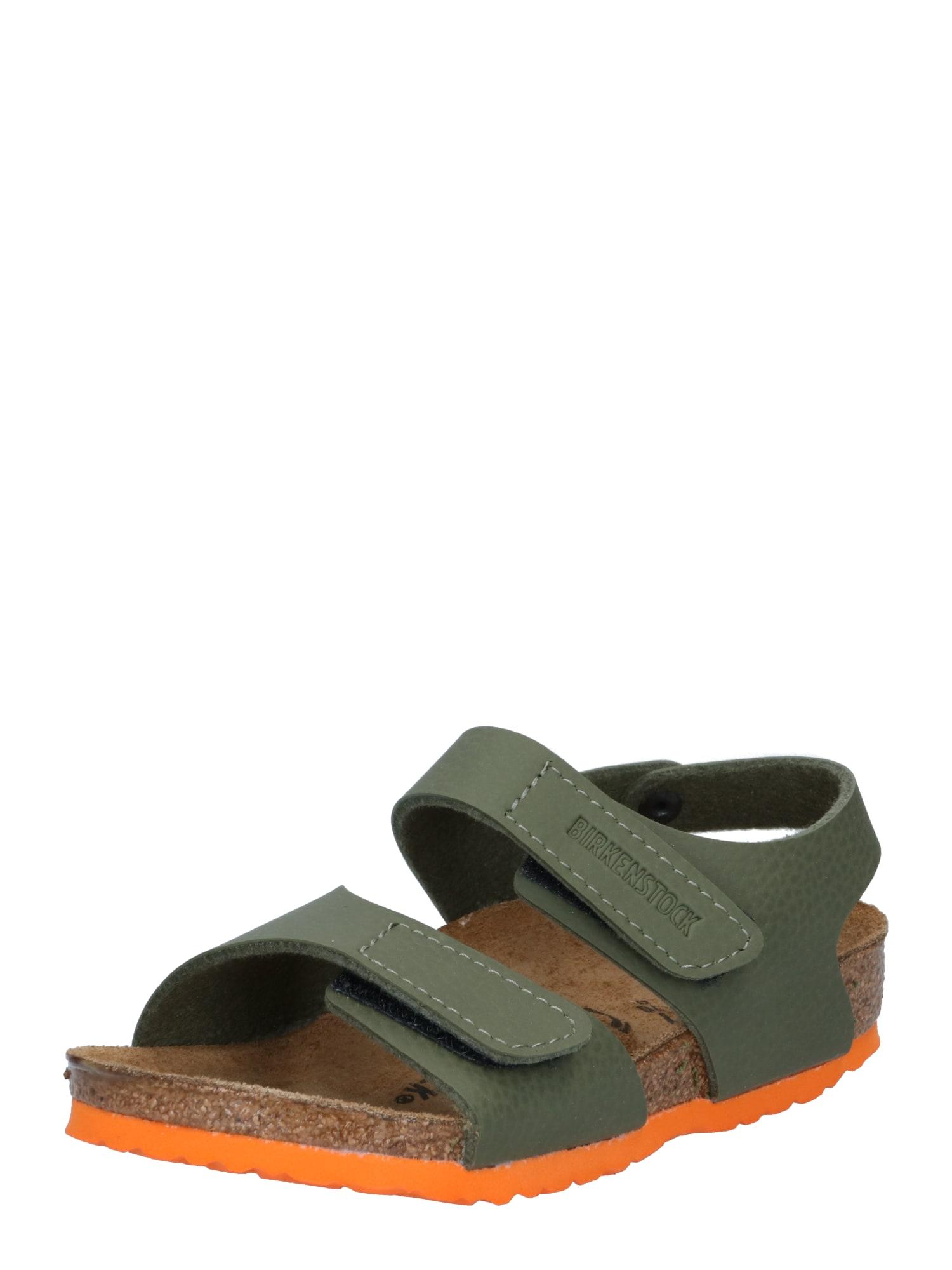 BIRKENSTOCK Atviri batai 'Palu' oranžinė / rusvai žalia