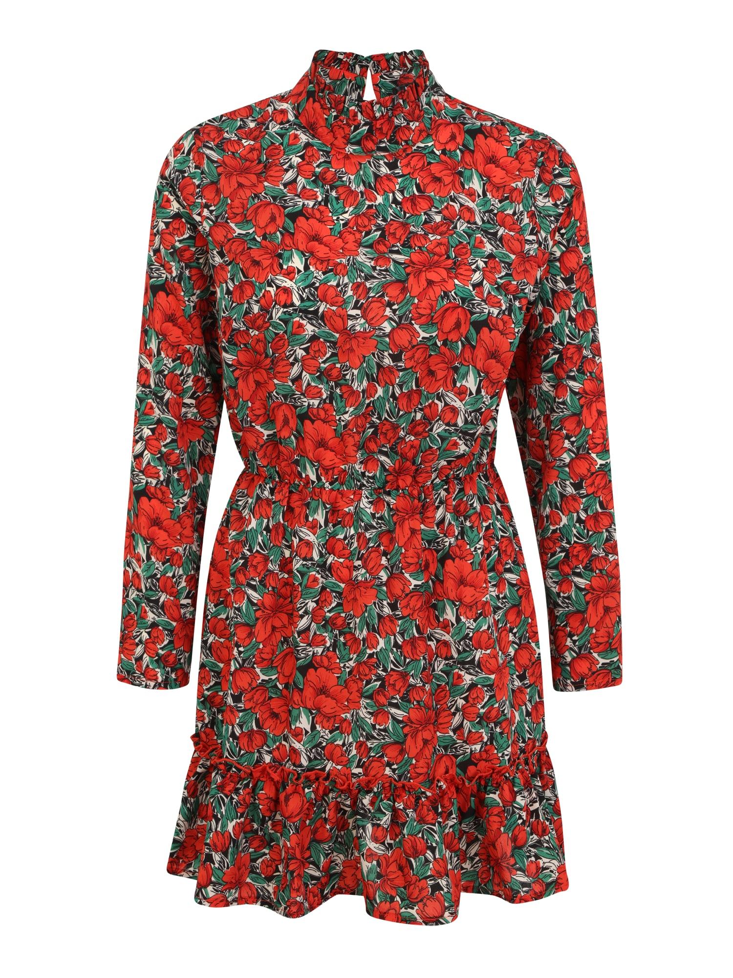 Missguided (Petite) Šaty  červená / černá / zelená / bílá