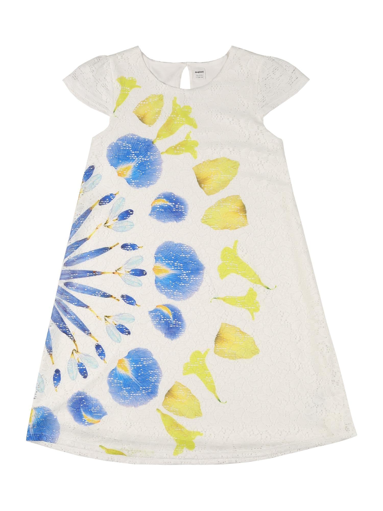Desigual Suknelė 'SILVIA' balta / mėlyna / geltona