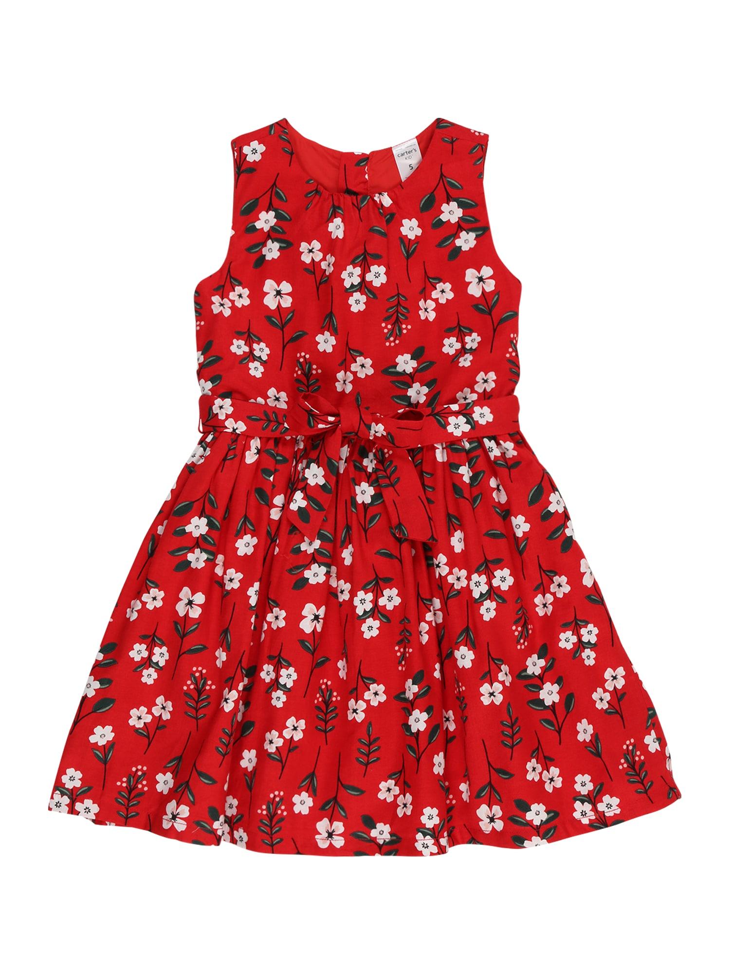 Carter's Suknelė 'HOLIDAY' mišrios spalvos / raudona