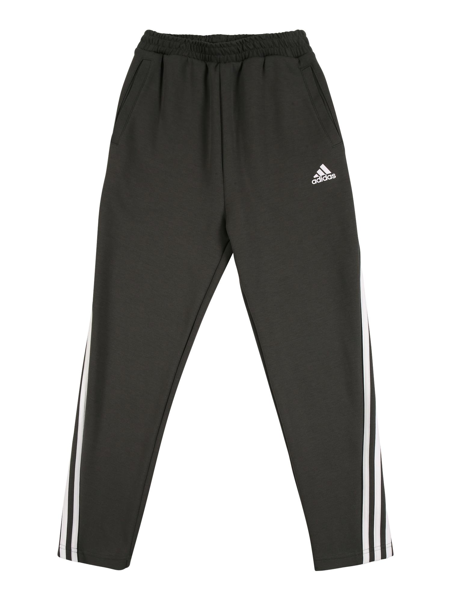 ADIDAS PERFORMANCE Sportovní kalhoty  černý melír / bílá