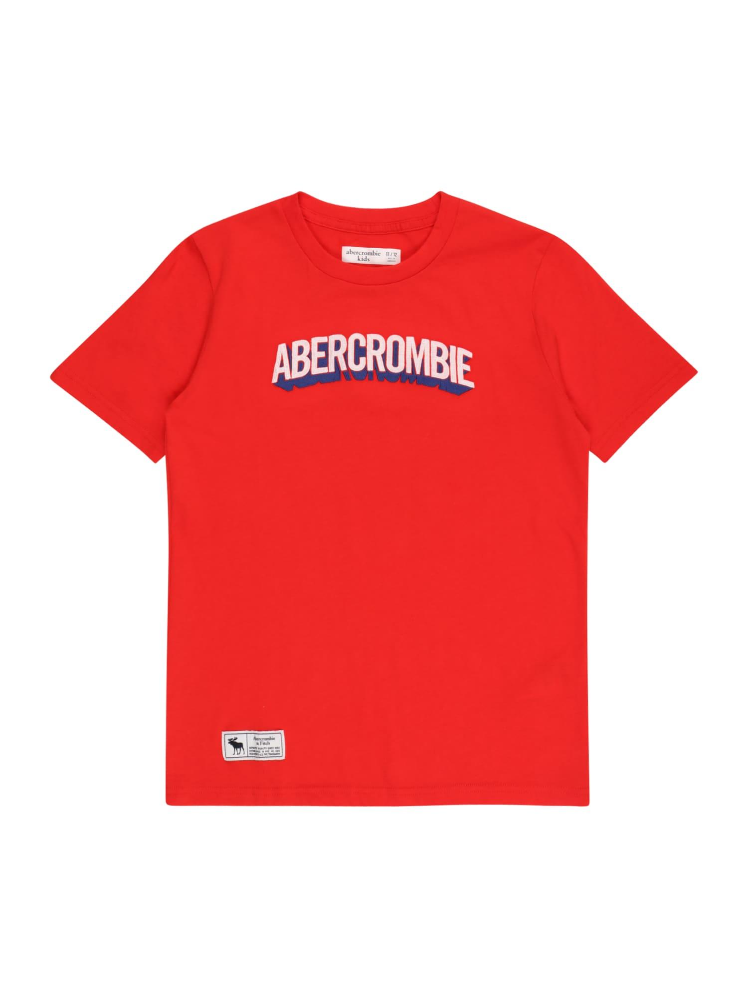 Abercrombie & Fitch Marškinėliai 'SUPERMAN' raudona / tamsiai mėlyna jūros spalva / šviesiai pilka