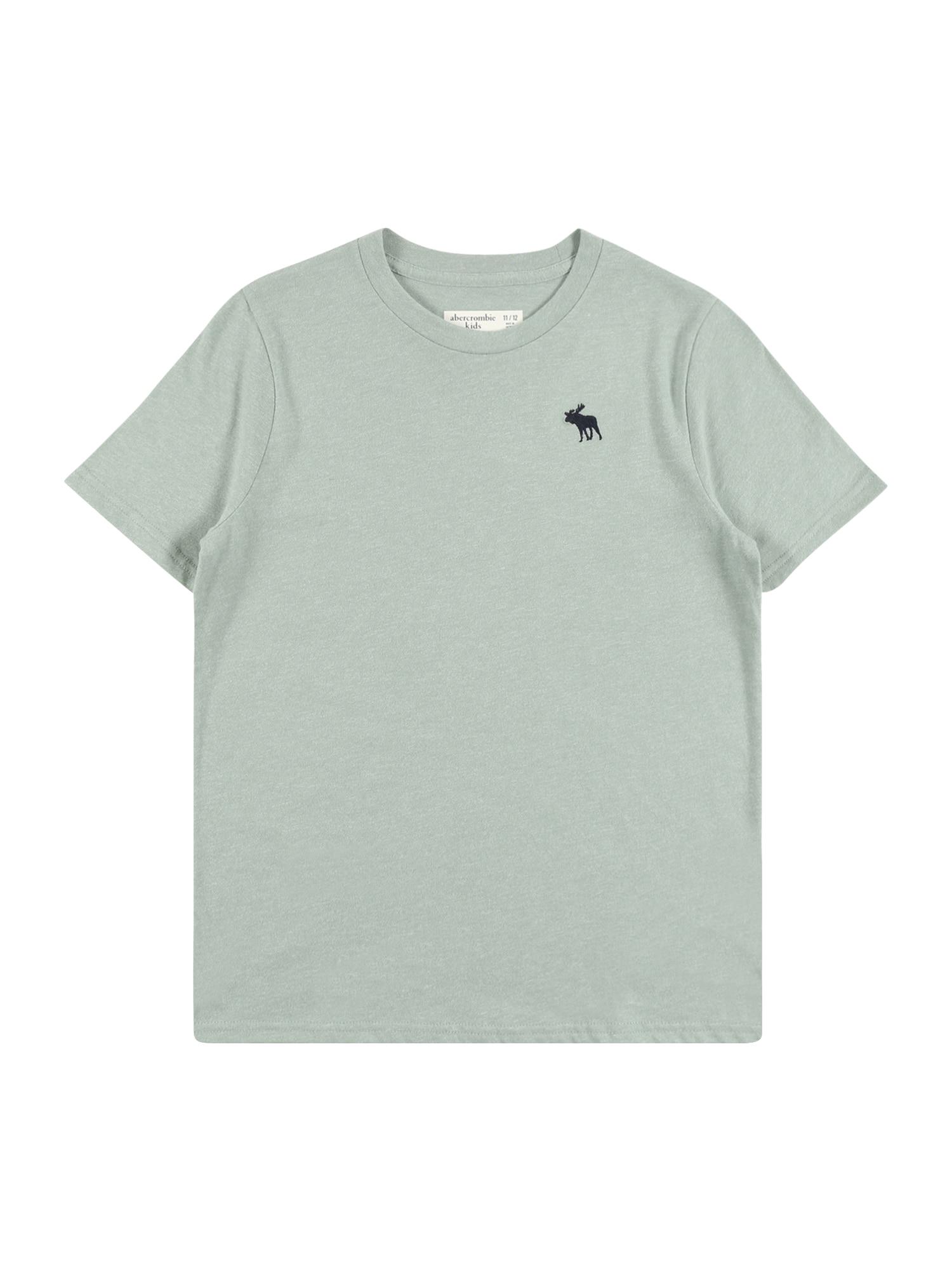 Abercrombie & Fitch Marškinėliai pastelinė žalia / juoda