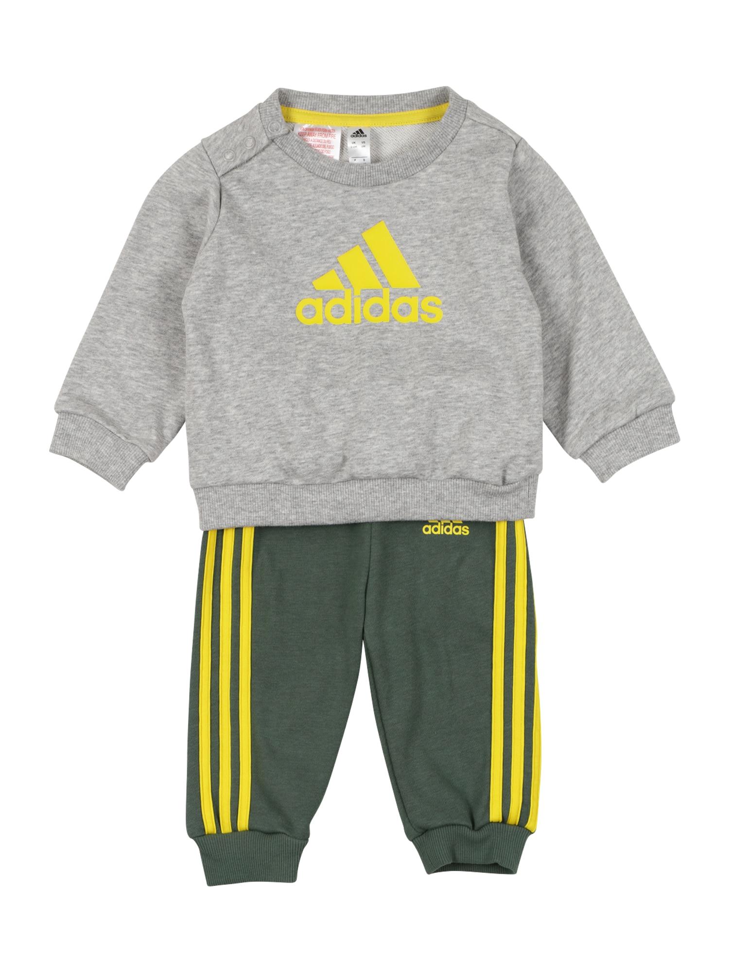 ADIDAS PERFORMANCE Treniruočių kostiumas margai pilka / tamsiai žalia / geltona